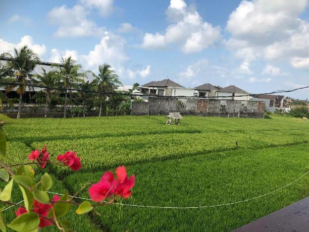 New!Canggu Feels like Ubud 2 mins to the beach-3BR