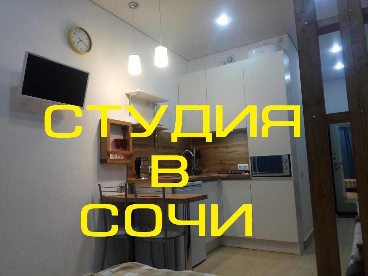 Comfortable Studio In Sochi