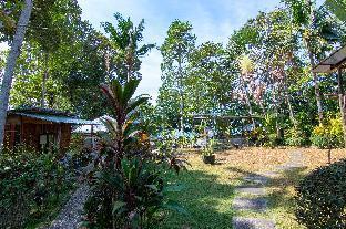 Ban na kai mook beach (B.3) Fan สตูดิโอ บังกะโล 1 ห้องน้ำส่วนตัว ขนาด 16 ตร.ม. – หาดทรายขาว