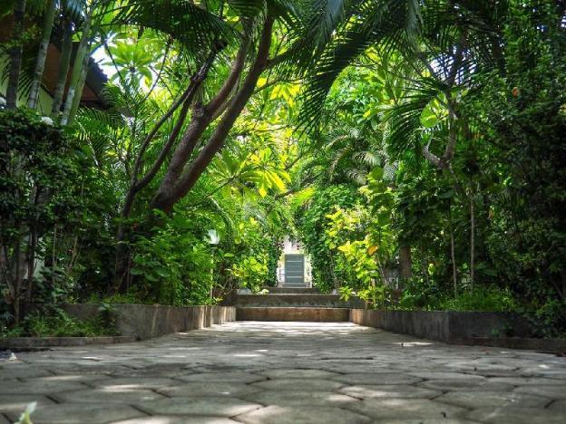 Scuba Tribe Bali Room 3