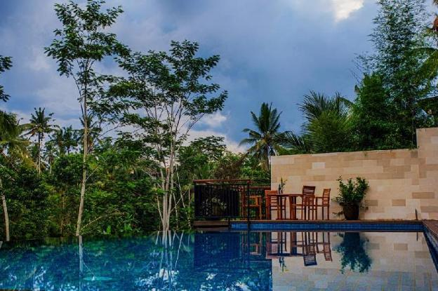 6BR Private Infinity Pool with Rice Field View