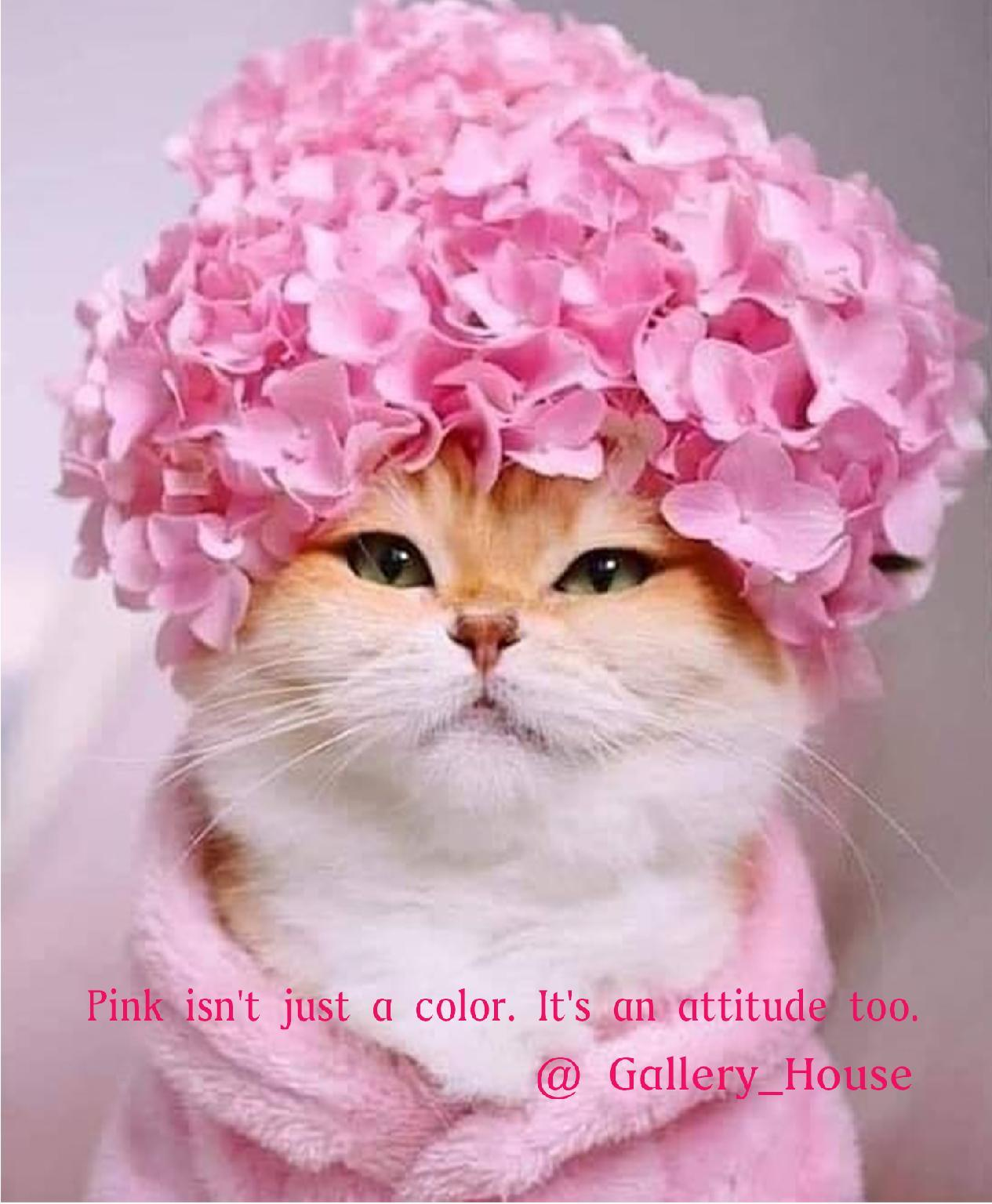 Pink isn't just a color. It's an attitude too.