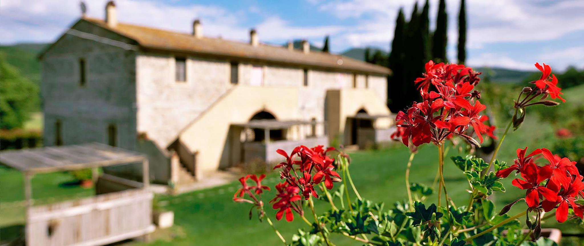 Sunny Apartment In Beautiful Tuscany