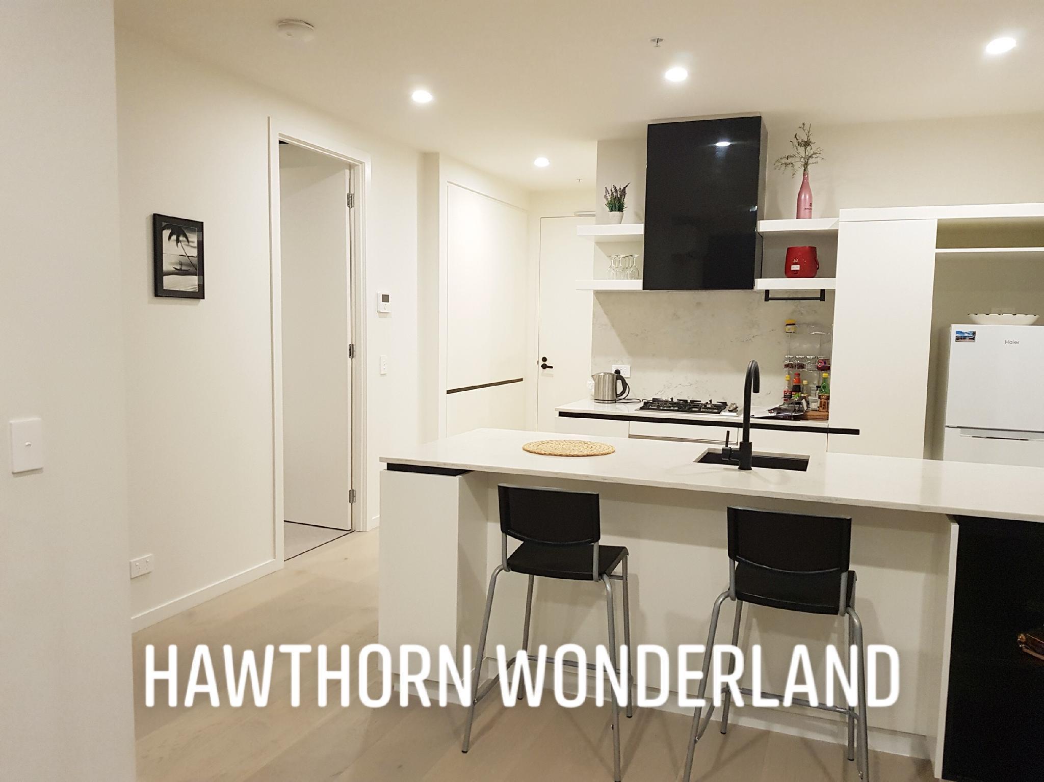 SPECIAL OFFER Hawthorn Wonderland
