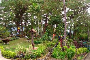 picture 3 of A Little House in Baguio