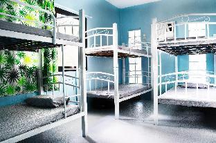picture 2 of Panda House,8 Dorm room,15mins to Alona Beach