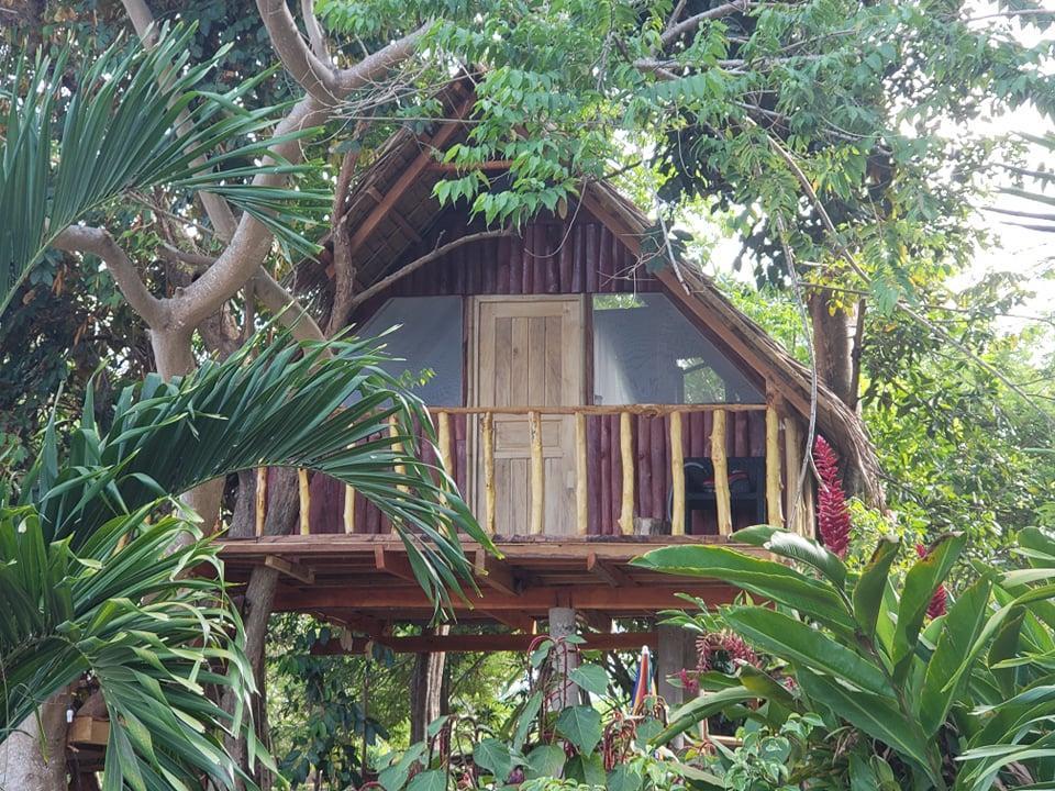 Whimsical Treehouse Cottage