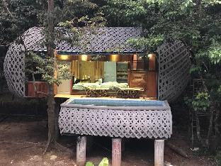 PhunawaCityPark - Big Bird's Nest House 4-5 people บ้านเดี่ยว 1 ห้องนอน 1 ห้องน้ำส่วนตัว ขนาด 150 ตร.ม. – พนม