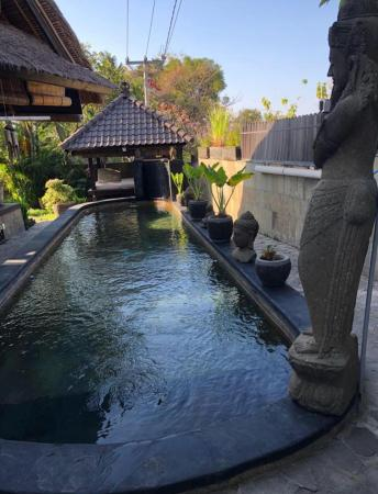 Villa Lalang Lovina included breakfast with staff Bali