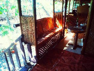 picture 3 of native bamboo house