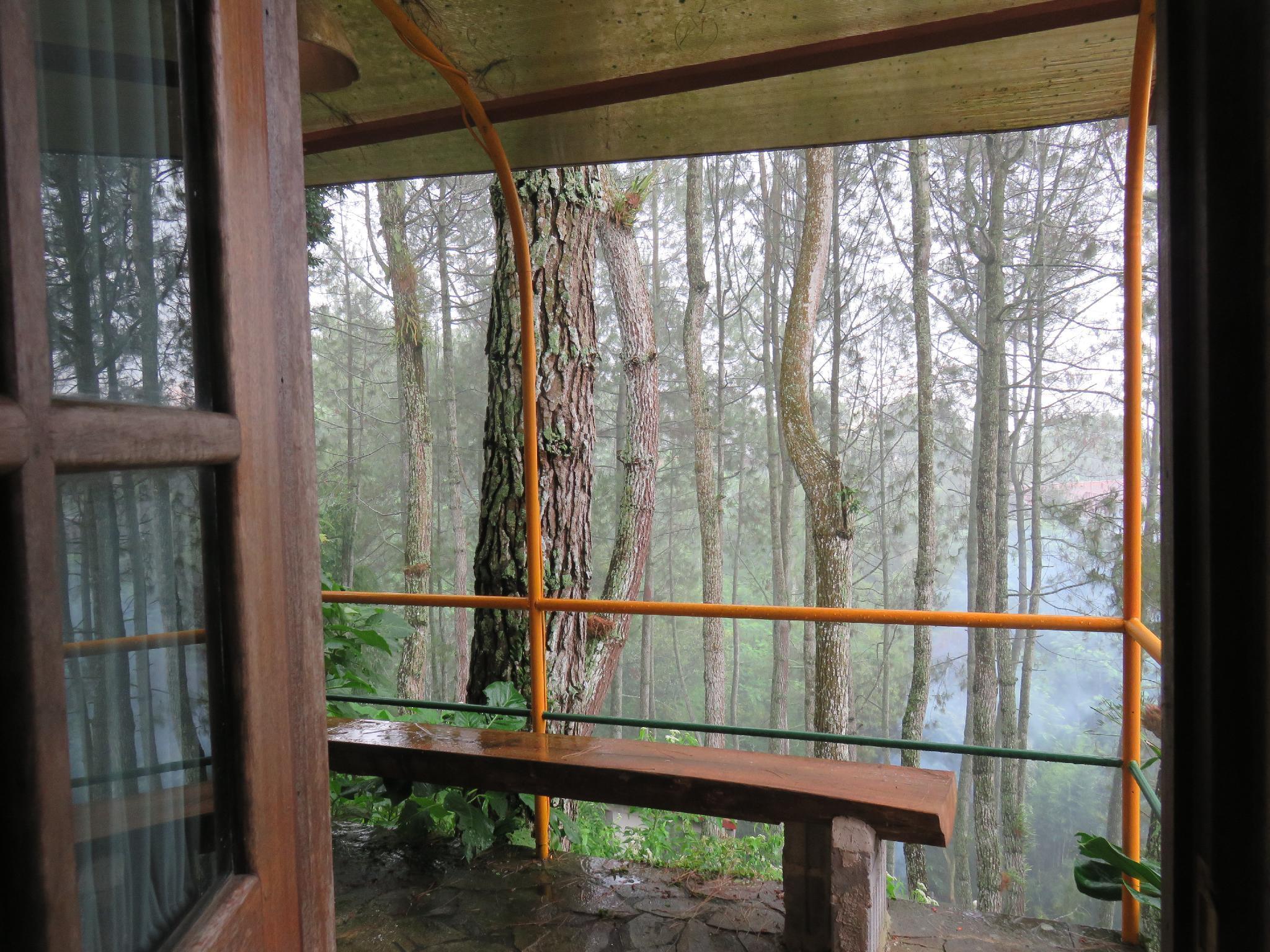 Argo Mayang 2  Eco Park    A Unique Experience