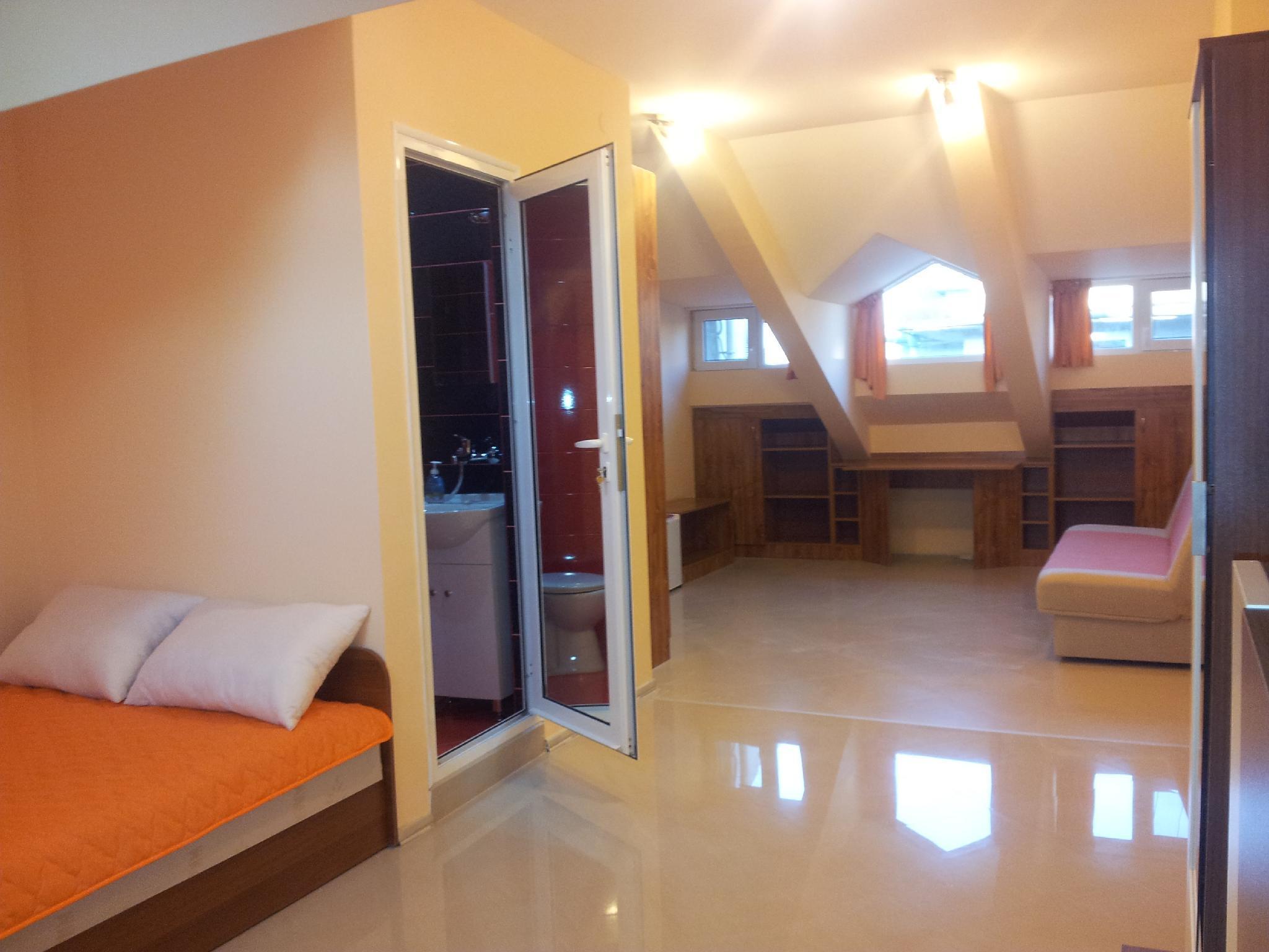 Top Floor Guest Apartment   Vidra 2