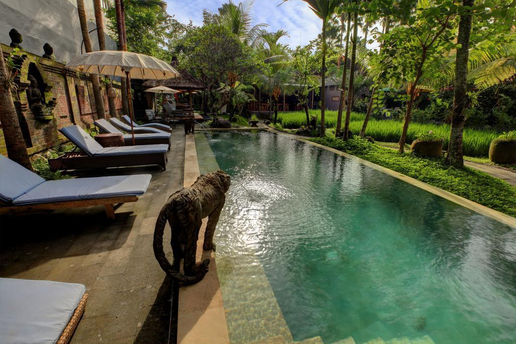 BEST Full Facility Rooms And Restaurant In Lush Ubud