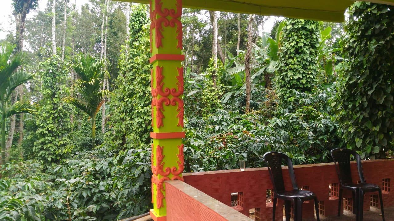 Baladi Coffee Estate Stay
