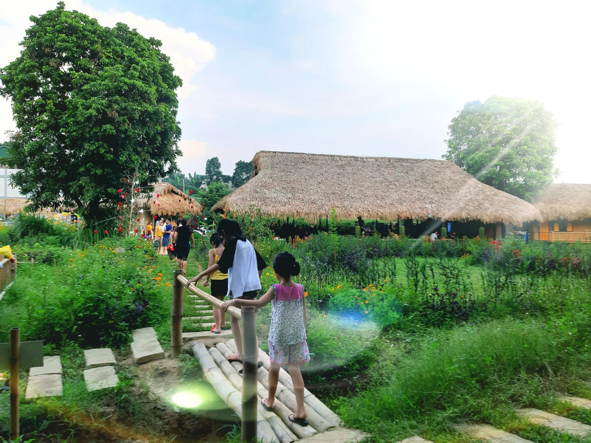 Lovely Bamboo House