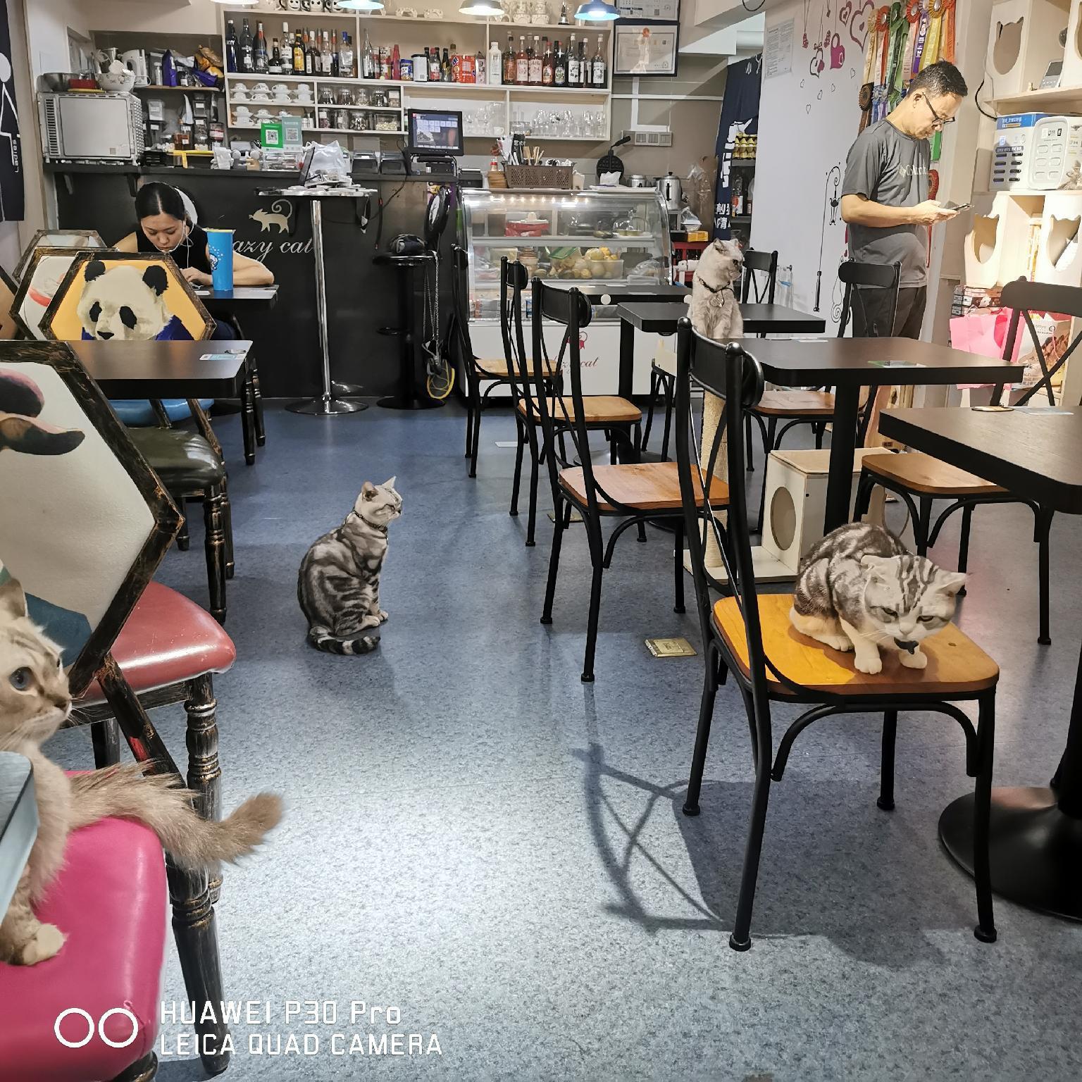 BaonengIPAC WandaSquare Ruifeng In HuangpuDistrict